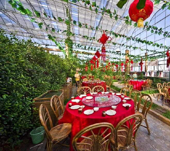 生态餐厅又叫温室餐厅、阳光餐厅、休闲餐厅、天然餐厅等名称。这些餐厅是由种植温室繁衍而来,它们共同的特点是餐厅内种植或装饰有植物、花草,以及建造有各种景观。但各个名字的含义也有不同之处,温室餐厅是以温室为基础发展而成,它的特点是温度、湿度可调整为就餐者感到舒适的范围;阳光餐厅的特点是以阳光为能源;休闲餐厅含义较广,没有清楚的表明餐厅性质。作者认为,几种名称之中,以生态餐厅这个名字为最科学、合理,最能准确描述这类餐厅的个性,也是最有前途和可持续发展的一种餐厅产业。生态温室餐厅是将现代设施农业和绿色餐饮完美结合